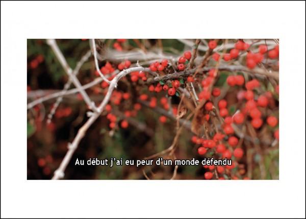 carte-postale_verso-14-600x430